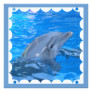 Bottlenose Dolphin Invitation