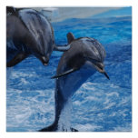 Dolphin Jumping  Poster