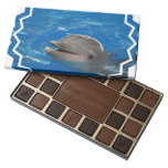 Lovable Dolphin Assorted Chocolates