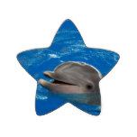 Lovable Dolphin Star Sticker